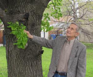 Prof. Vytautas Osvaldas Virkau.