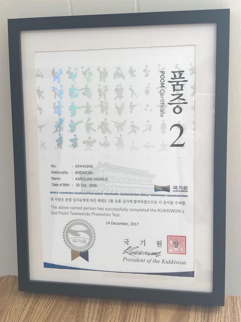 Karolinos jaunimo iki 15 m. antrojo laipsnio juodojo diržo sertifikatas.