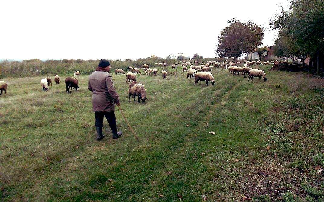 Kasdienybė Slavyani kaime.