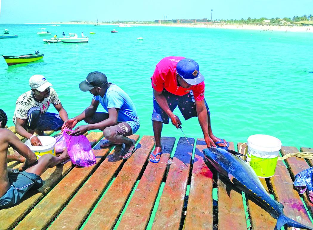 Ką tik pagautas tunas čia pat dorojamas ir parduodamas žuvies mėgėjams.