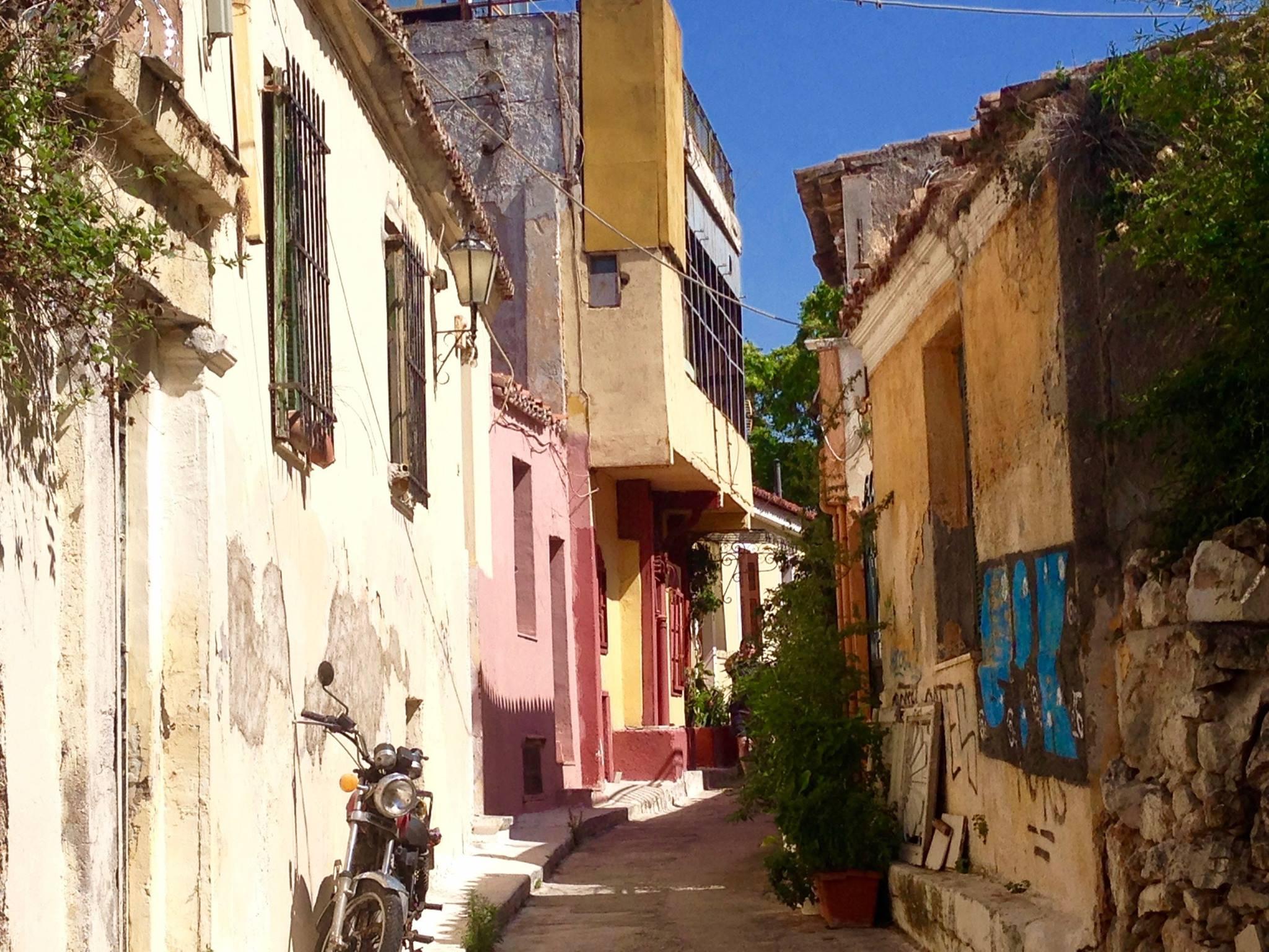 Kipras, įamžintas rašytojos Dalios Staponkutės žvilgsniu.