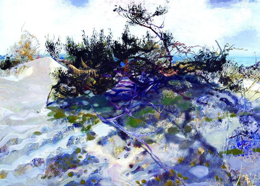 Šviesa nuo marių. 2004.Drobė, aliejus. 73x100.