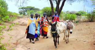 Maasai moterys keliauja į turgų.