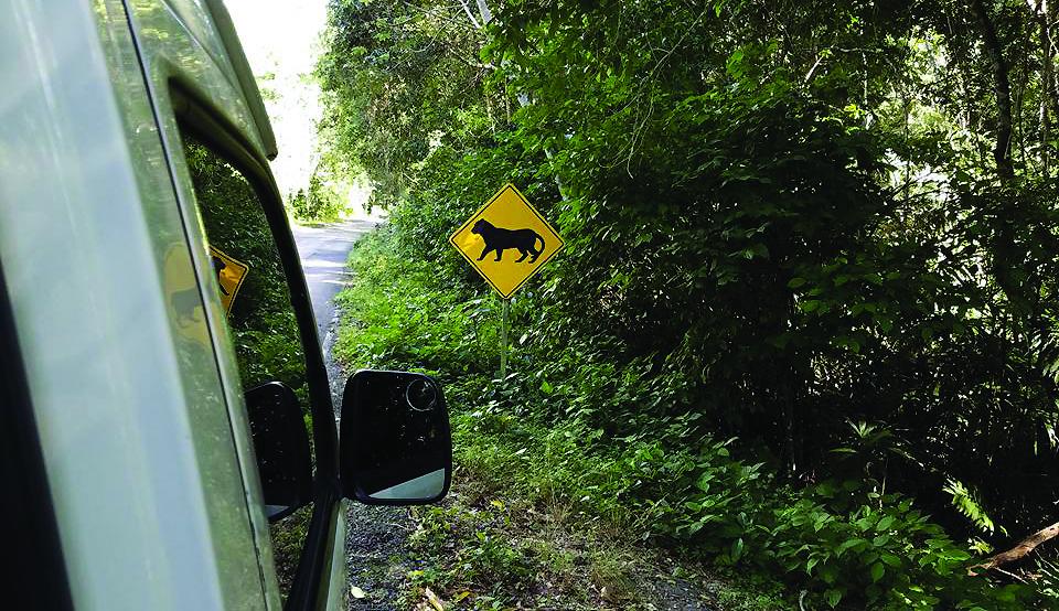 Ne kiekvieną dieną pamatysite tokių kelio ženklų...