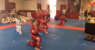 Taekwondo – ne tik sportas, bet ir gyvenimo filosofija.